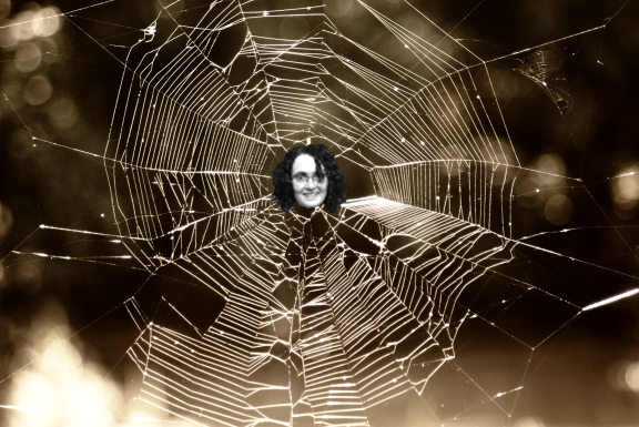 spider web with face 1